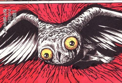 恐ろしい獣が世に放たれてしまったイメージ画像。