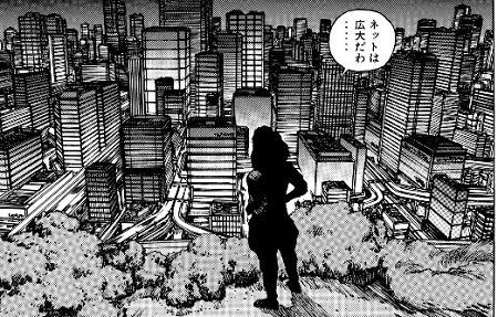 「ネットは広大だわ……。」by草薙素子