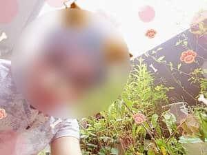 LINEで男から送られてきた写真「花壇の花」